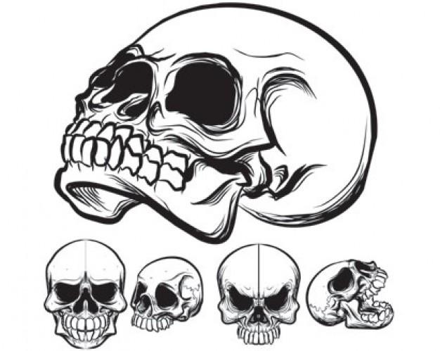 626x499 Stock Vector Skull Pack
