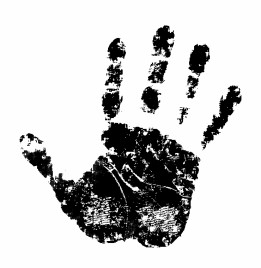 261x268 Stop Hand Vectors Stock For Free Download About (3) Vectors Stock