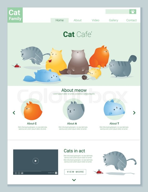 616x800 Animal Website Template Banner And Infographic With Cat Story