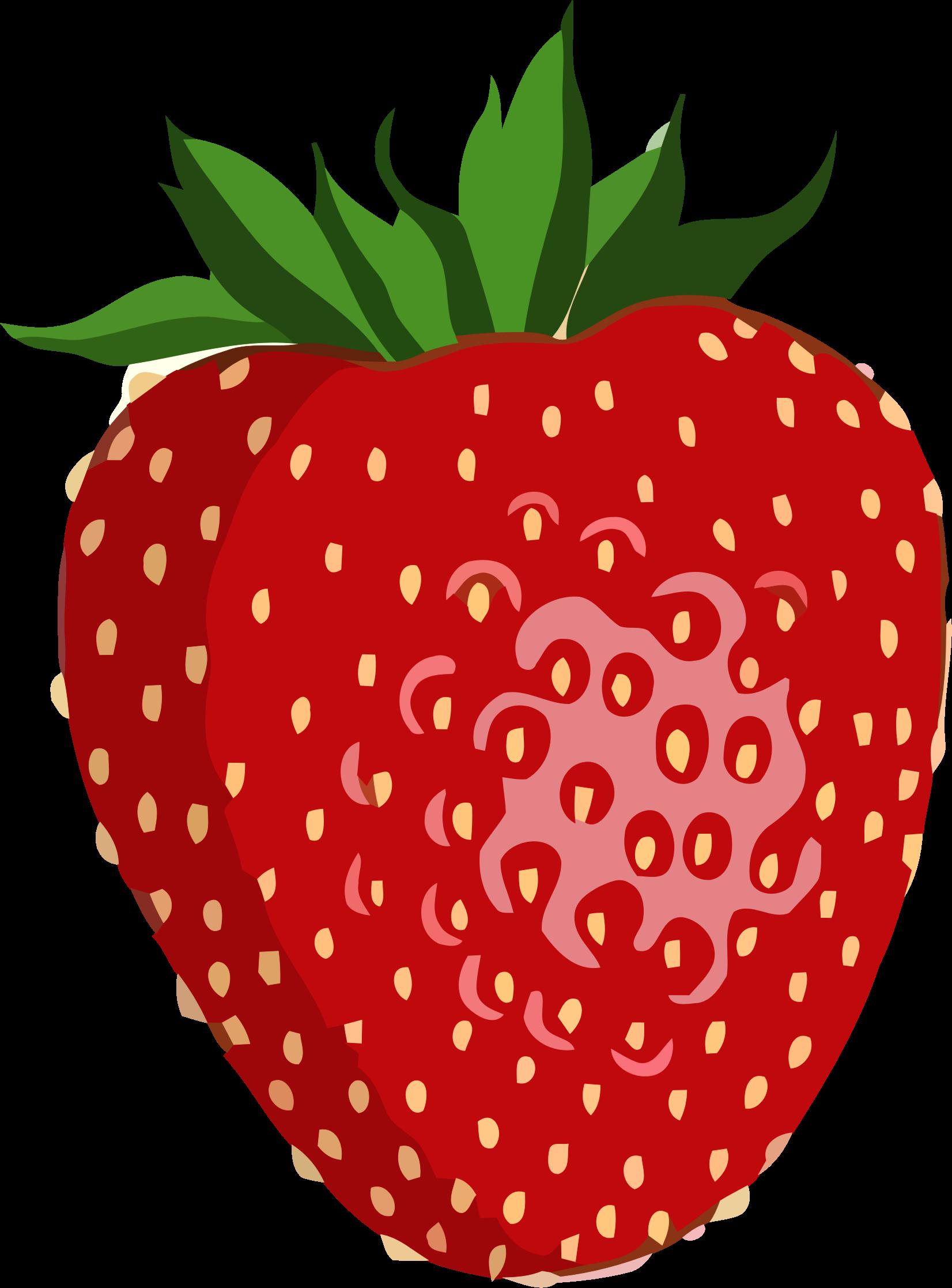 1652x2234 Shiny Strawberry Vector Graphic Image