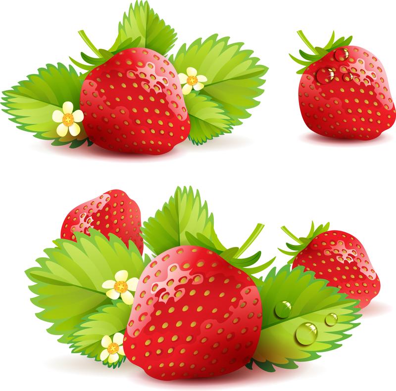 800x790 Strawberry Theme Background