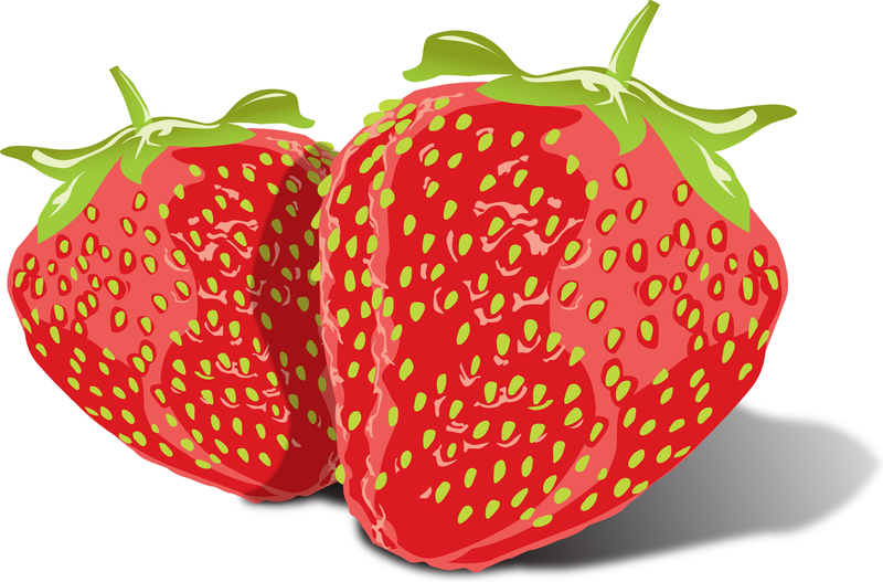 800x527 Tasty Vector Strawberries