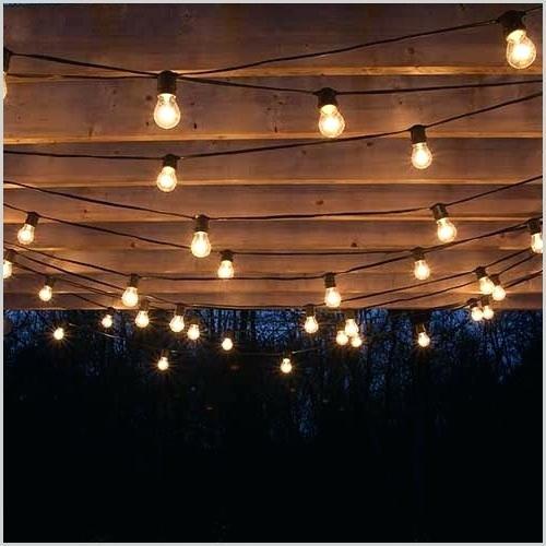 500x500 Summer String Lights Destination Summer Cafe String Lights