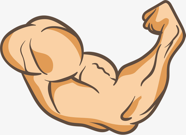 650x472 A Powerful Arm, Strong, Arm, Muscle Png And Vector For Free Download