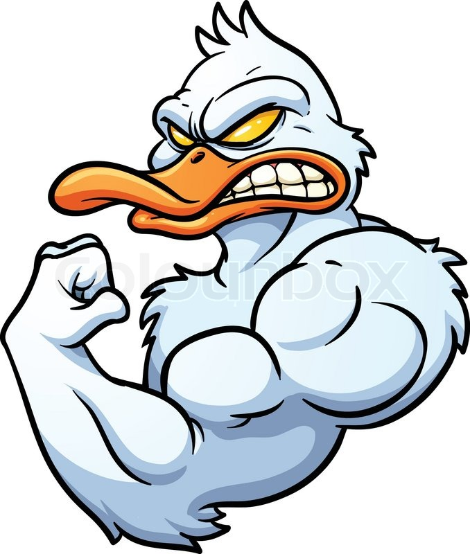 678x800 Strong Cartoon Duck Mascot. Vector Illustration With Simple