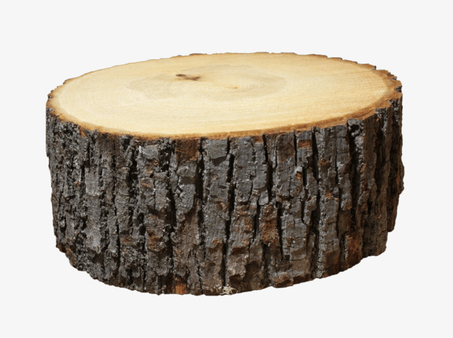 650x485 Vector Stump, Stump Vector, Stump Graph, Stump Png Diagram Png And