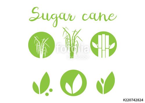 500x357 Sugar Cane Silhouettes Icons. Sugar Cane Vector Illustration