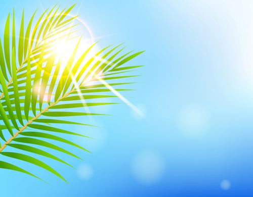 500x390 Shiny Summer Background Vector Free Vector In Encapsulated