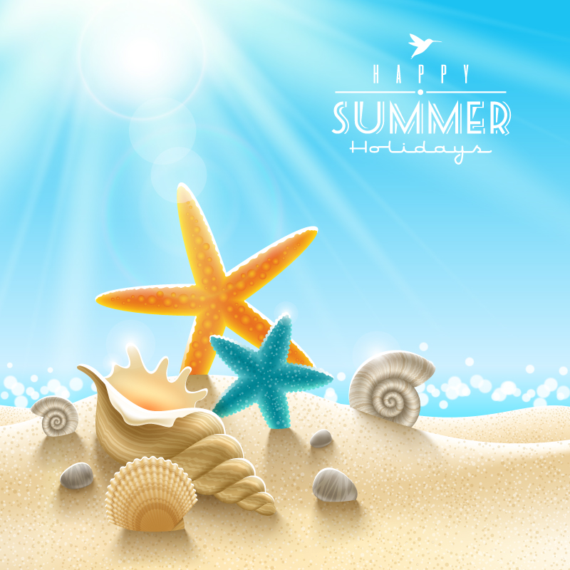 800x800 Summer Beach Starfish Background Vector Free Vector Graphic Download