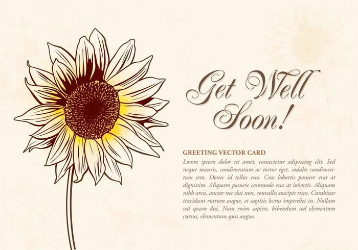 700x490 Sunflower Free Vector Art