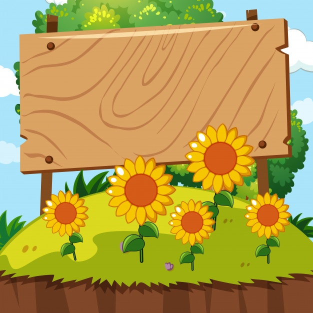 626x626 Sunflower Vector Vectors, Photos And Psd Files Free Download