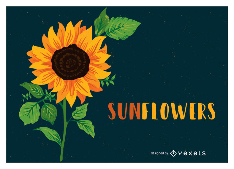 788x570 Sunflower Illustration With Text