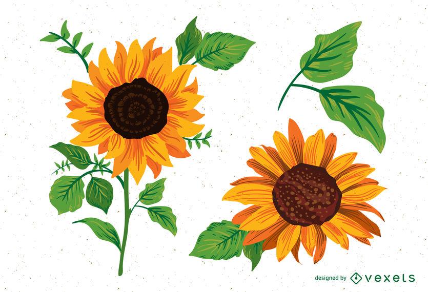 835x570 Sunflower Illustrations Pack