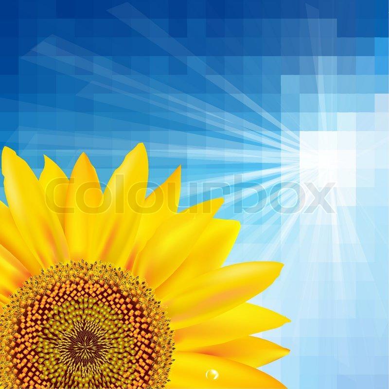 800x800 Blue Sky And Sunflower, Vector Illustration Stock Vector Colourbox