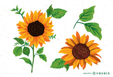 381x260 Sunflower Vector Amp Graphics To Download