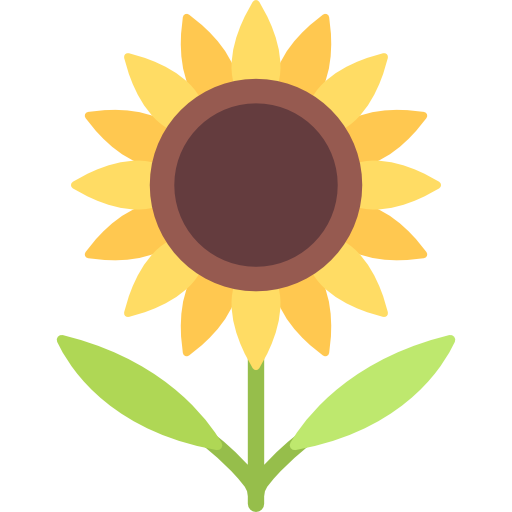 512x512 Sunflower Vector