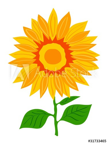375x500 Sunflower. Vector