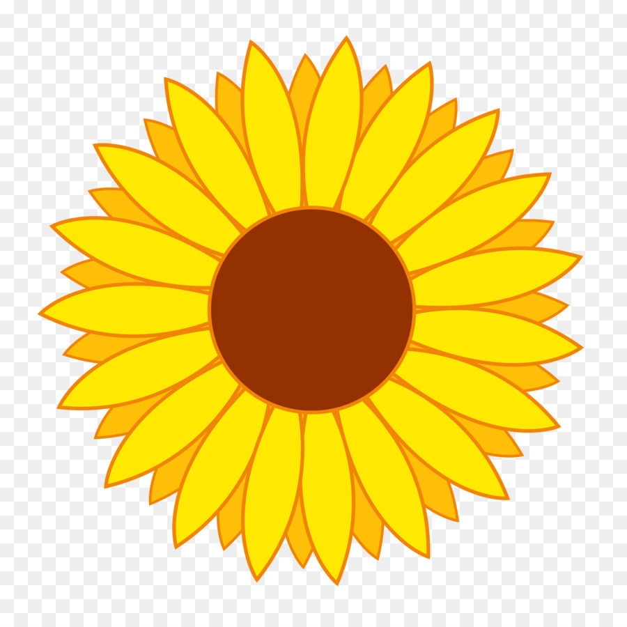 900x900 Common Sunflower Clip Art