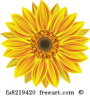 182x194 Free Art Print Of Sunflower. Vector Sunflower, Realistic