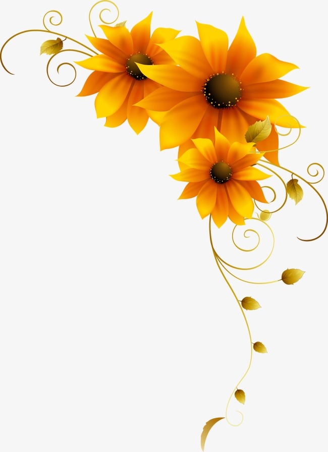 650x896 Sunflower Vectors, 983 Graphic Resources For Free Download