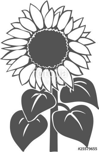 324x500 Sunflower Vinyl Ready Vector Illustration Stock Image And Royalty