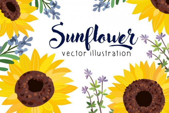551x368 Sunflower Free Vector Download (243 Free Vector) For Commercial
