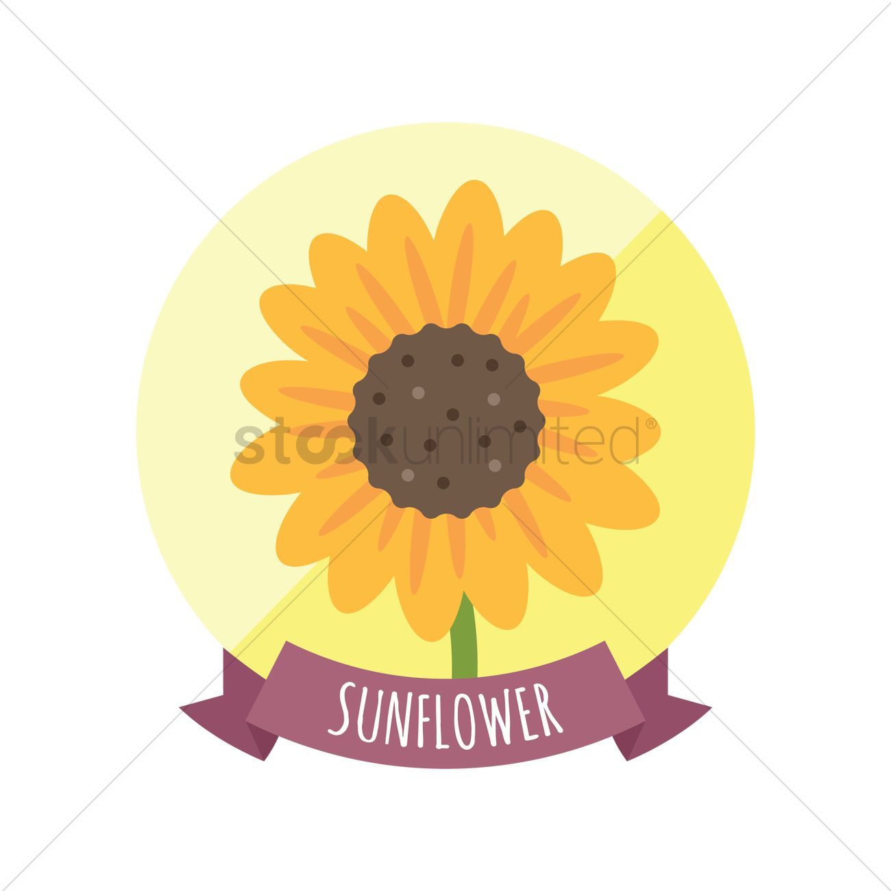 1300x1300 Free Sunflower Vector Image