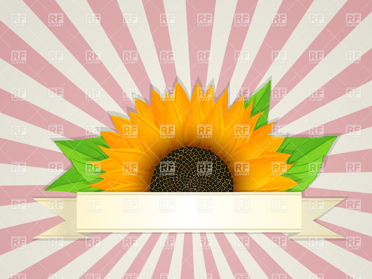 1200x900 Summer Banner Design With Graphic Sunflower Vector Image Vector