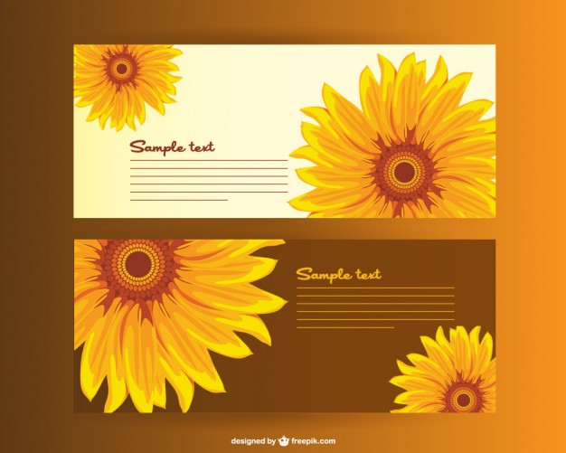626x501 Sunflower Vector Vectors, Photos And Psd Files Free Download