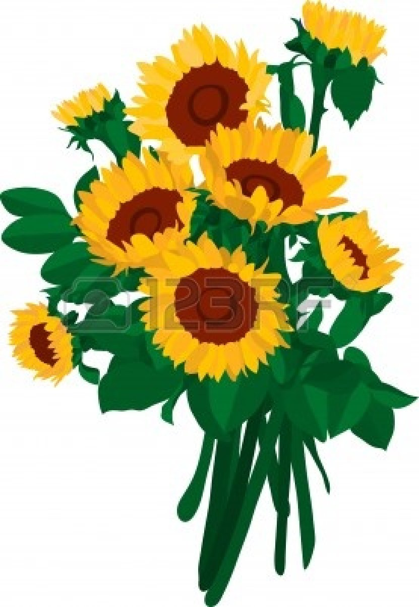831x1203 Of Sunflowers Vector Clipart Panda