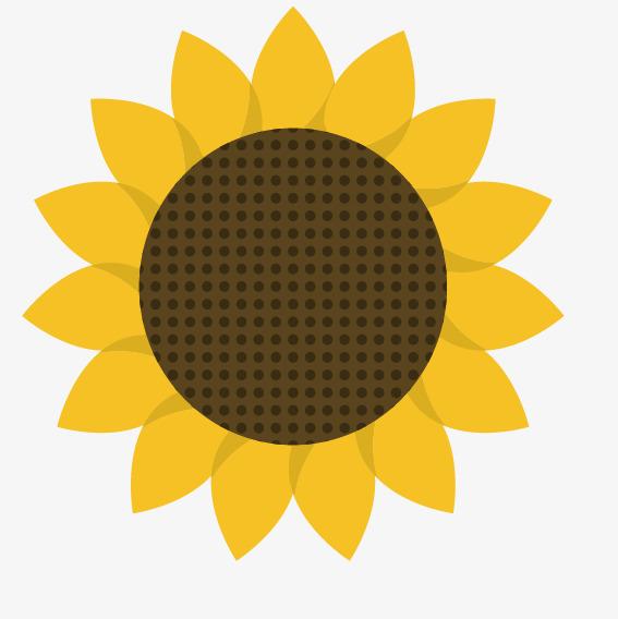 567x568 Cartoon Yellow Sunflower Pattern, Cartoon Vector, Sunflower Vector