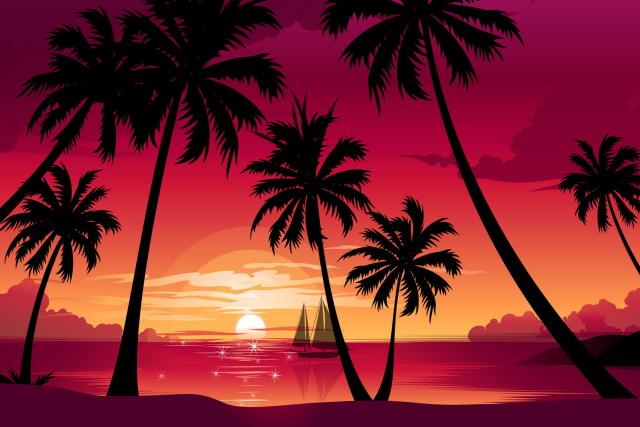 640x427 Nature Palm Trees Beach Sea Boat Sun Sunset Vector Living Room
