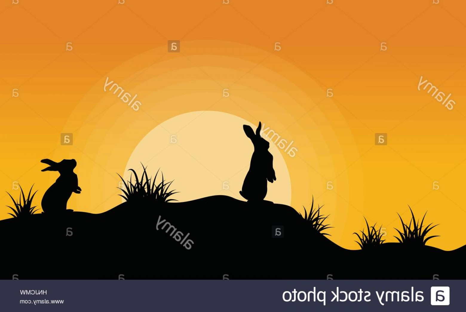 1560x1044 Stock Photo Silhouette Of Bunny On The Hill At Sunset Vector Art