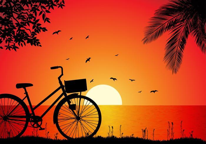 700x490 Bicicleta Beach Sunset Free Vector