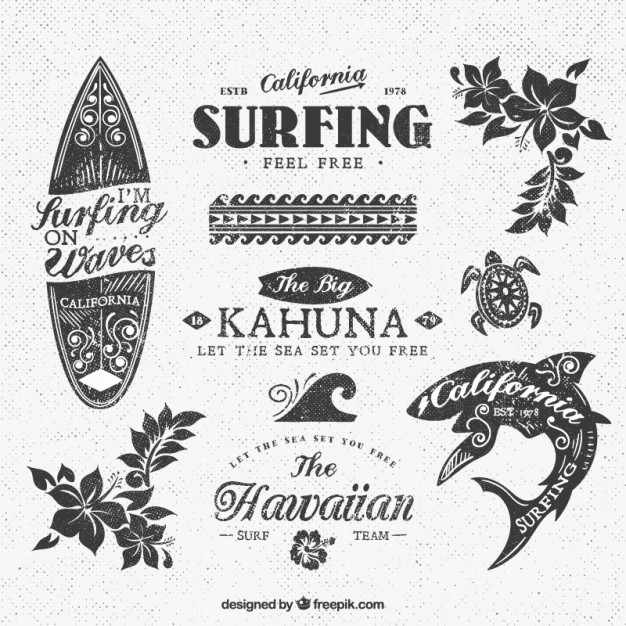626x626 Variety Of Surf Insignias Vector Free Download
