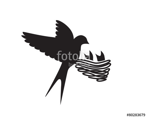 500x400 Swallow Bird Nest Stock Image And Royalty Free Vector Files On
