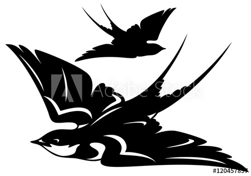 500x350 Swallow Bird Vector Outline And Silhouette