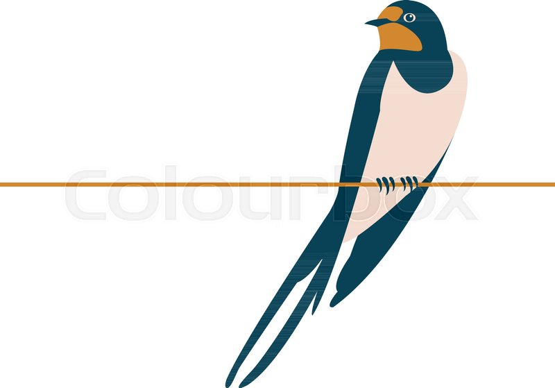 800x559 Swallow Vector Illustration Style Flat Side Front Stock Vector