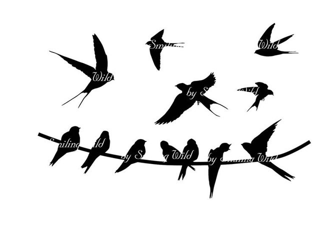642x454 Swallow Silhouette Clipart Svg Birds On Whire Png Flying Etsy