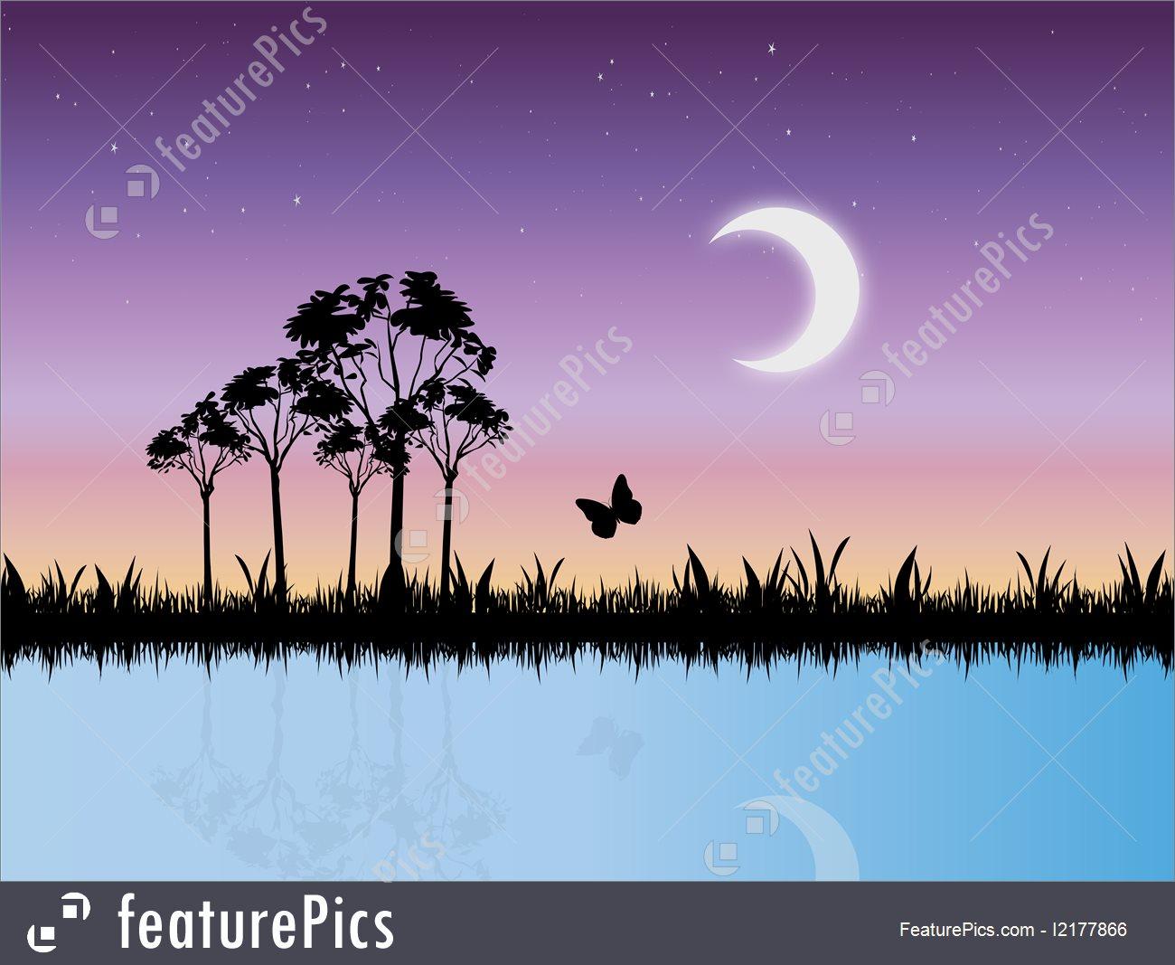 1300x1067 Starry Night Scene In Swamp Vector