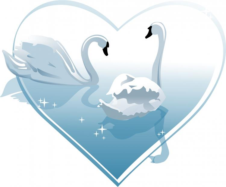 750x621 Heartshaped White Swan Vector Free Vector 4vector