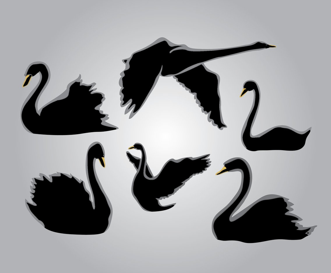 1136x936 Six Silhouette Swan Vector Art Amp Graphics