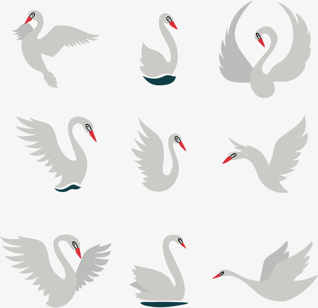650x629 Swan Vector Material, Different Shapes, Fly, Swan Png And Vector