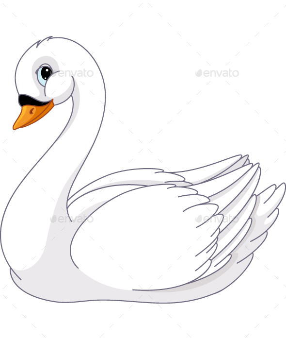 590x700 Swan Vectors From Graphicriver