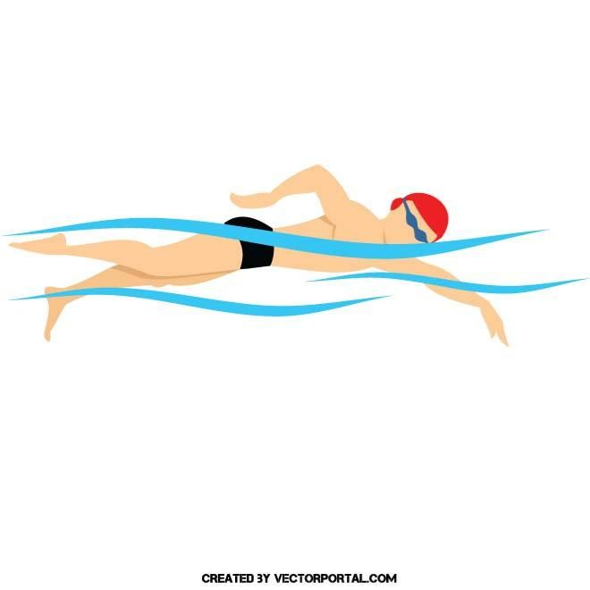 660x660 Swimming Vector Illustration. Sports Free Vectors In 2018