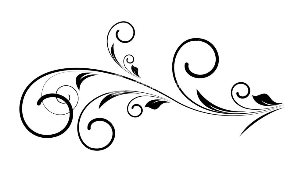 1000x566 Decorative Swirl Floral Vector Royalty Free Stock Image
