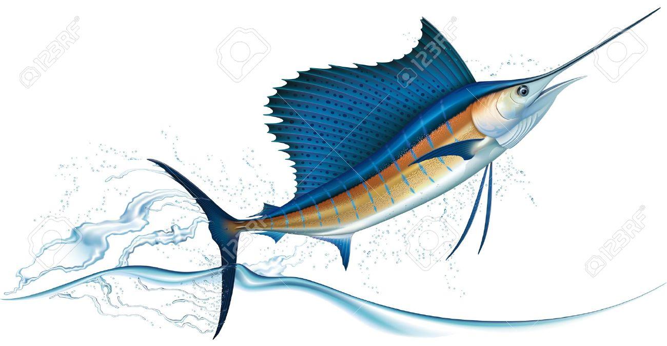 1300x674 Swordfish Clipart Vector 12