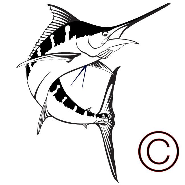 650x650 Swordfish Clipart Blue Marlin
