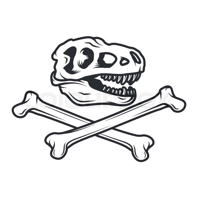 800x800 Prehistory Dino Logo Concept. T Rex Insignia Design. Jurassic