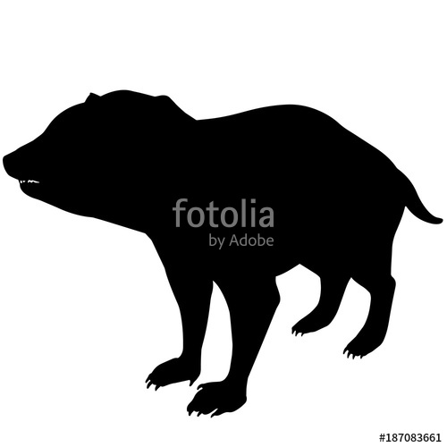 500x500 Tasmanian Devil Silhouette Vector Graphics Stock Image And